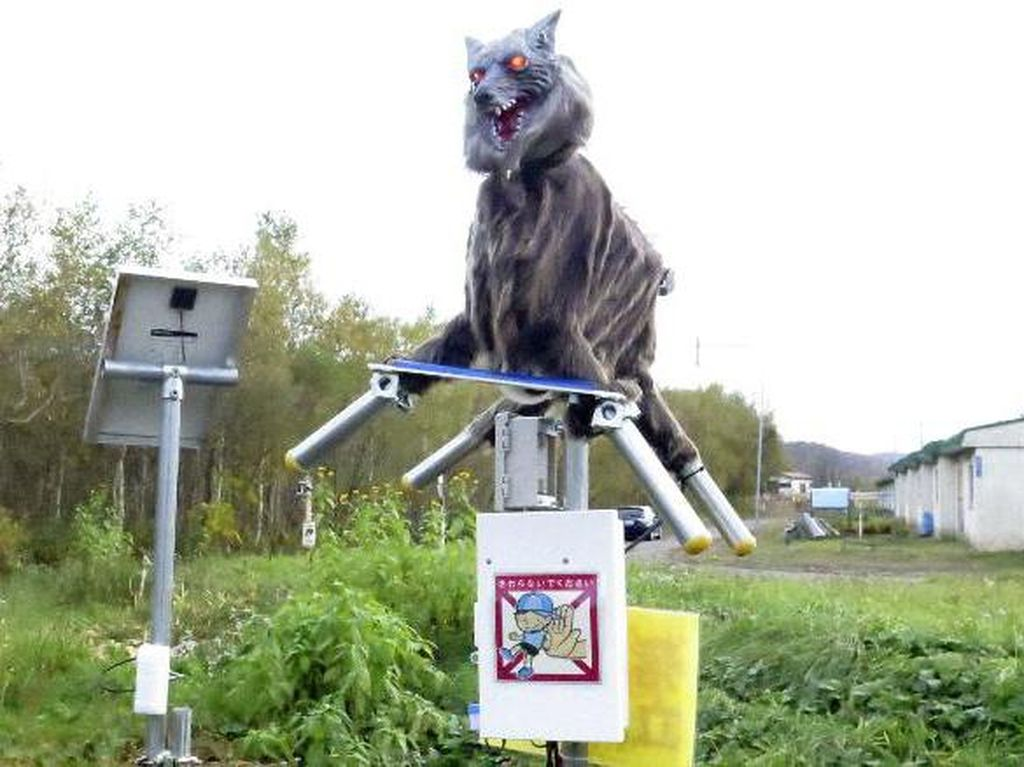Jepang Kerahkan Robot Monster Serigala Buat Hadang Beruang Liar