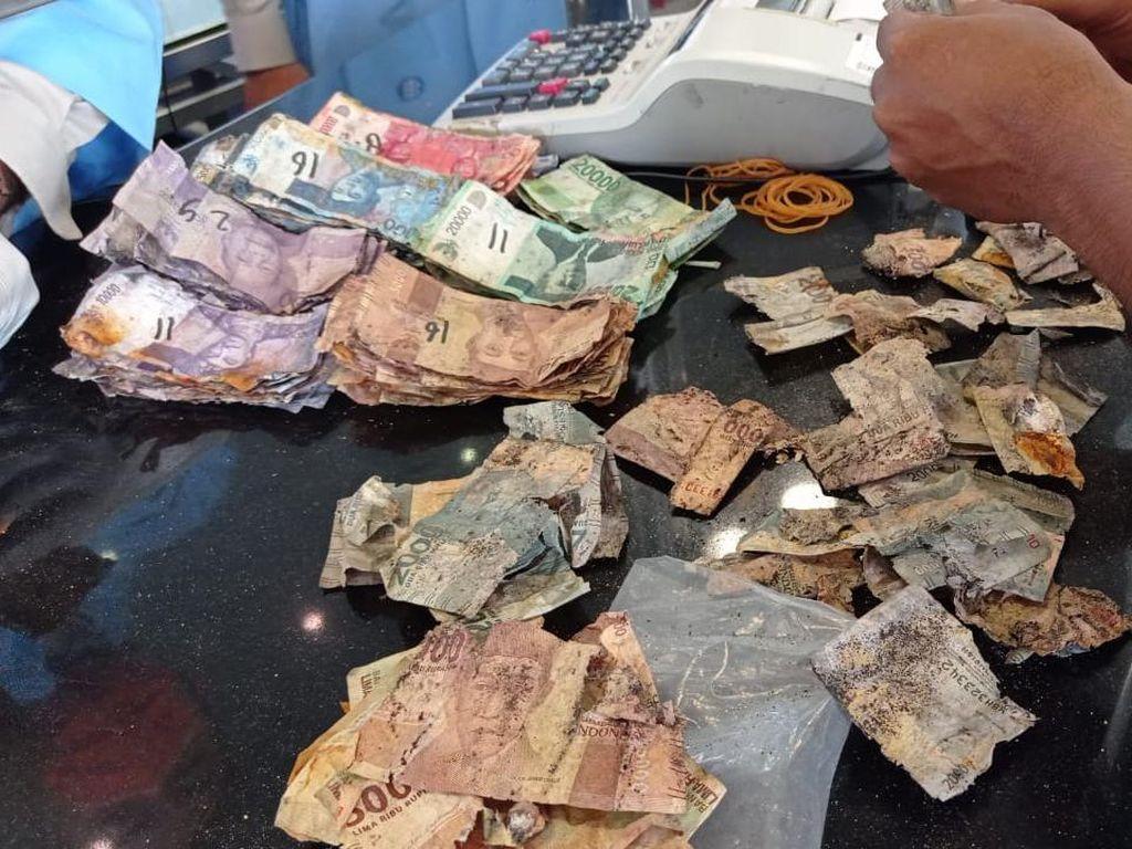 Punya Uang Rusak Dimakan Rayap? Tukar Aja di Bank Indonesia!
