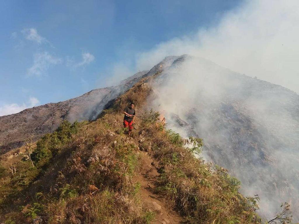 Sedih, Bukit Anak Dara di Lombok Terbakar