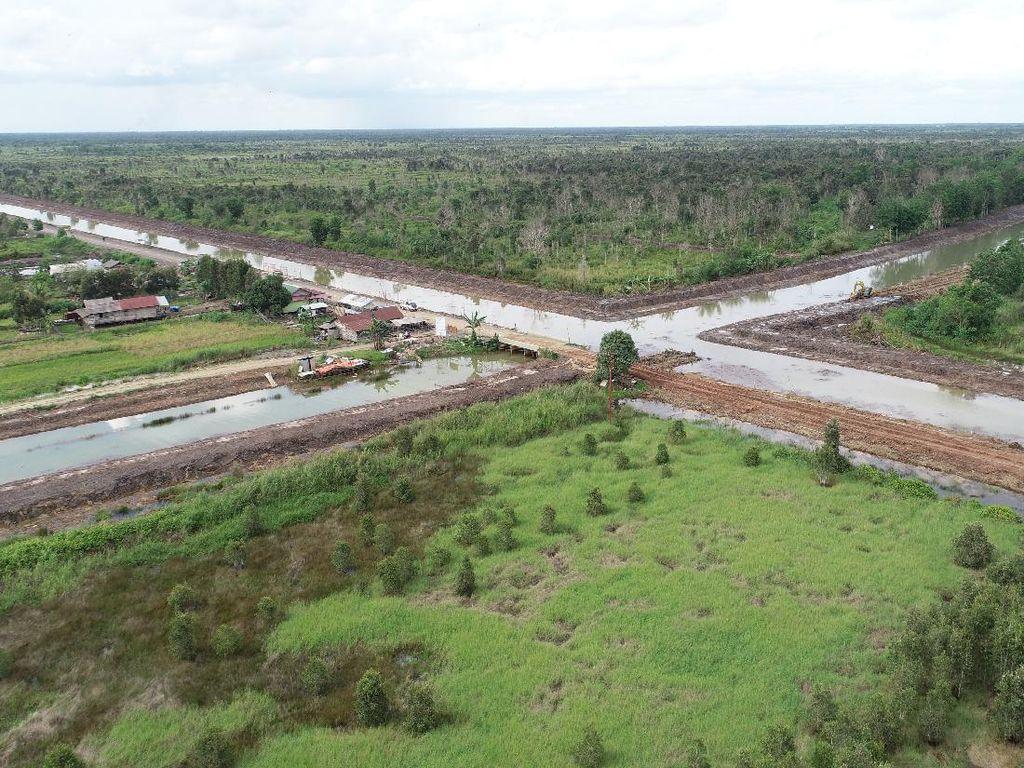 TNI Dikerahkan dalam Proyek Lumbung Pangan, Apa Tugasnya?