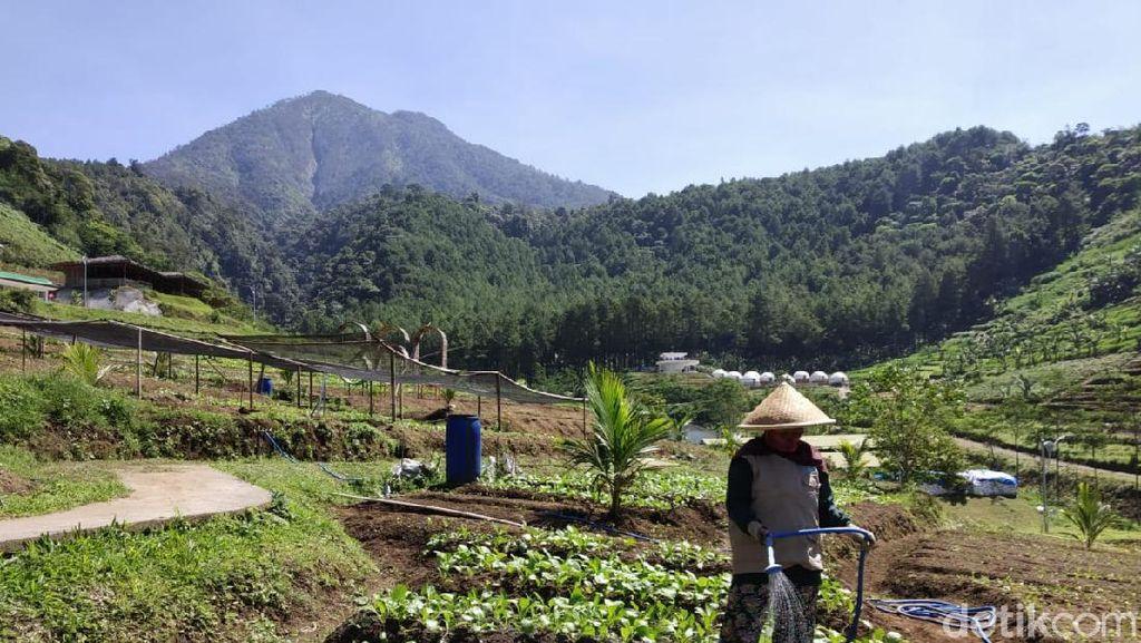Potret Lembah Indah, Destinasi Baru dari Malang