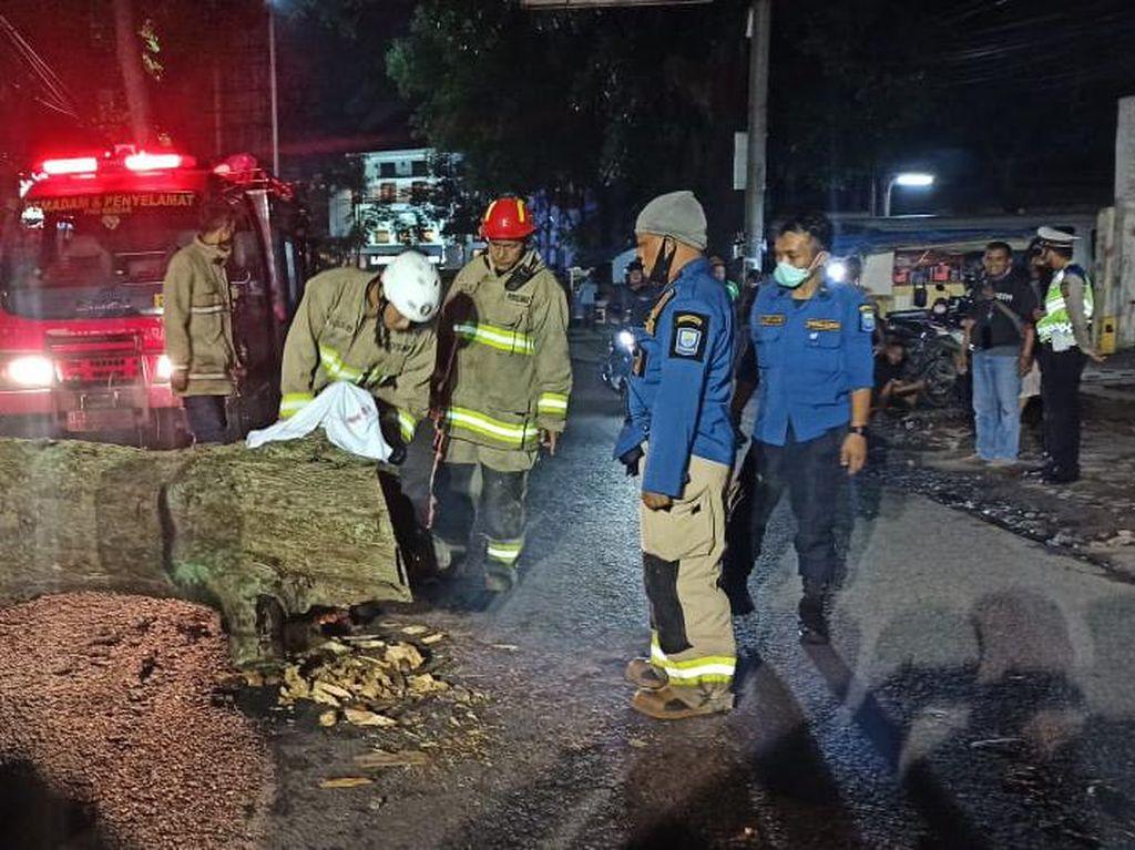 Pohon Tumbang Tewaskan 2 Pemotor, Ini Kata Pemkot Bandung