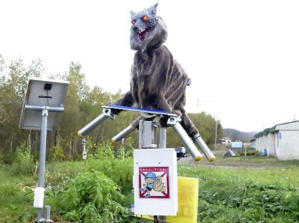 Jepang Gunakan Robot Serigala Untuk Takuti Beruang