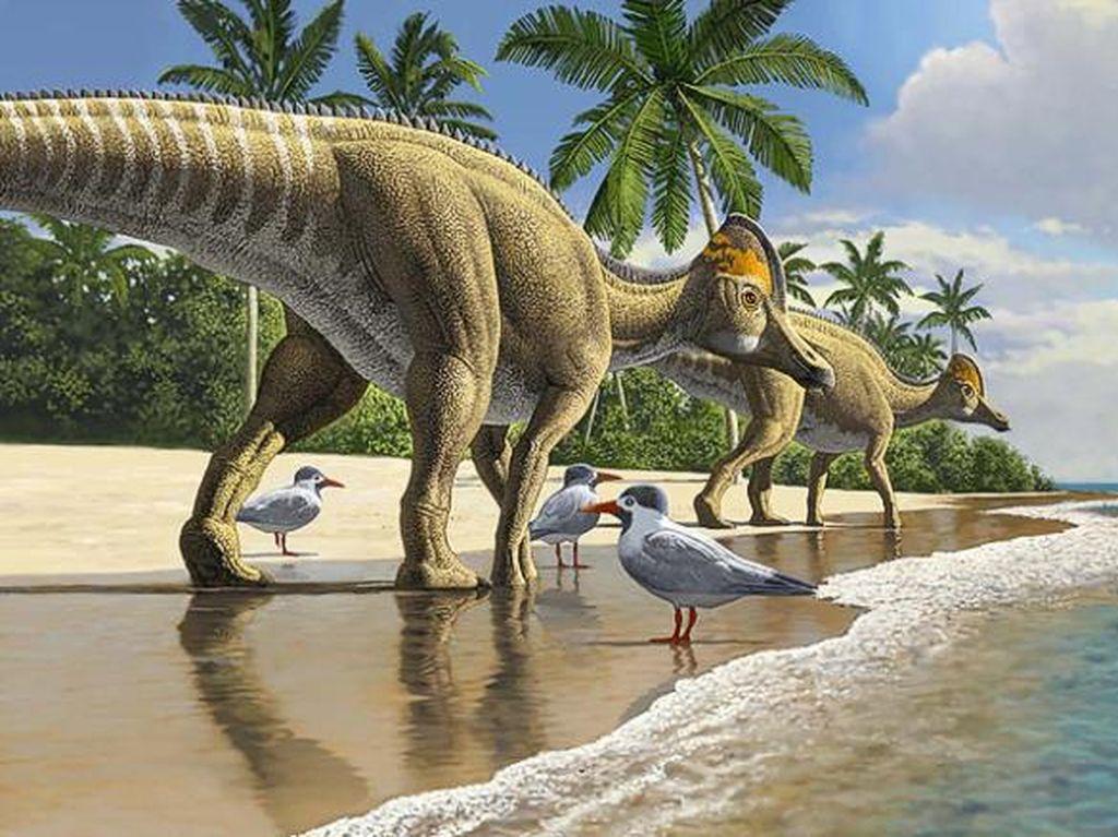 Dinosaurus Mampu Seberangi Lautan?