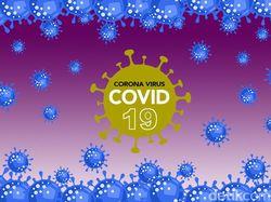 Jubir Satgas COVID-19 Sultra Positif Corona, Jalani Isolasi Mandiri di Rumah