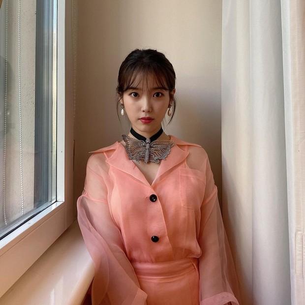 Sebelum meraih popularitasnya seperti sekarang ini, penyanyi solo IU juga pernah memiliki masa lalu dan sejarah keluarga yang tragis.