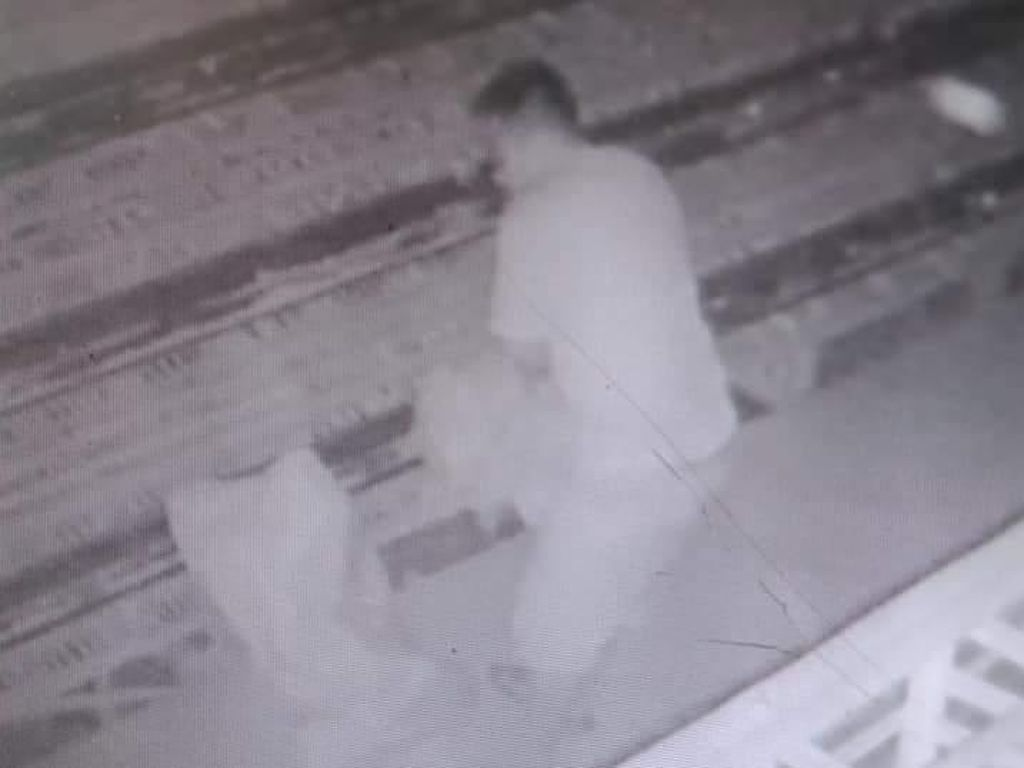 Pemilik Pasang CCTV Gegara Ternak Ayam Sering Hilang, Ini yang Terekam