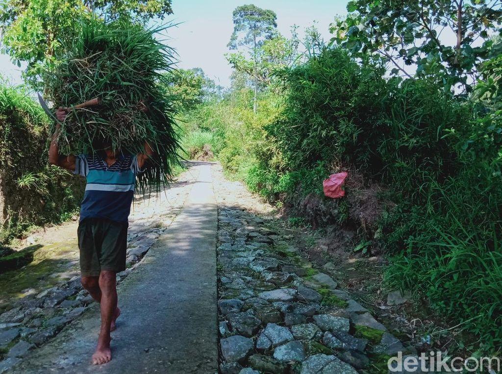 Klaten Perpanjang Masa Tanggap Darurat Gunung Merapi