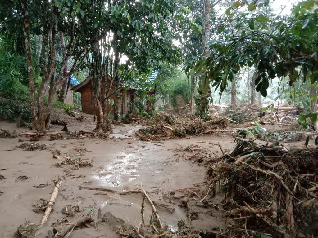 Banjir Bandang Terjang Area Landak River Sumut, Kebun-Penginapan Rusak