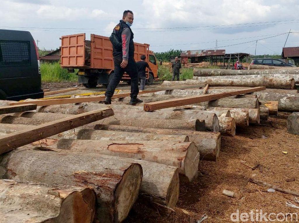 Foto: Ratusan Kayu Ilegal Diamankan di Kampar Riau
