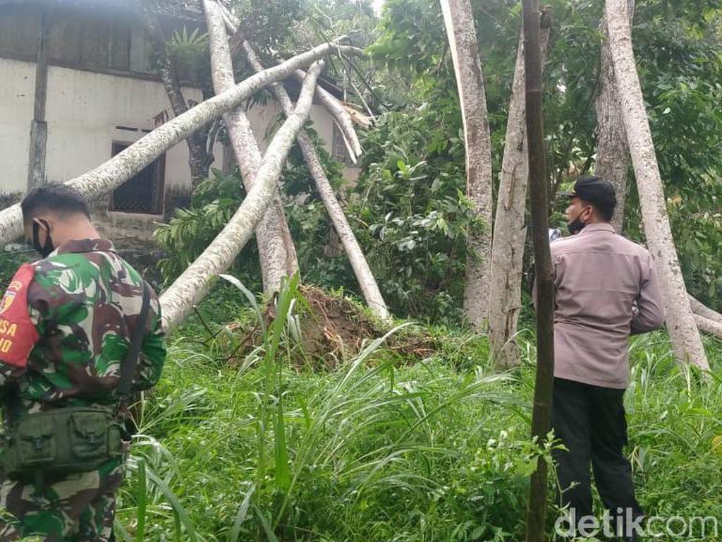 Puting Beliung Terjang Desa di Blitar, Ratusan Pohon Tumbang dan 5 Rumah Rusak