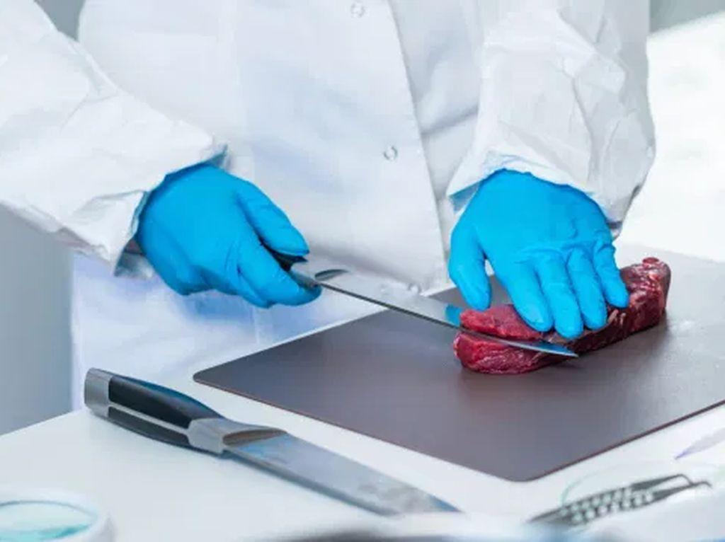 Baru! Steak dari Sel Tubuh Manusia Kini Tengah Dikembangkan