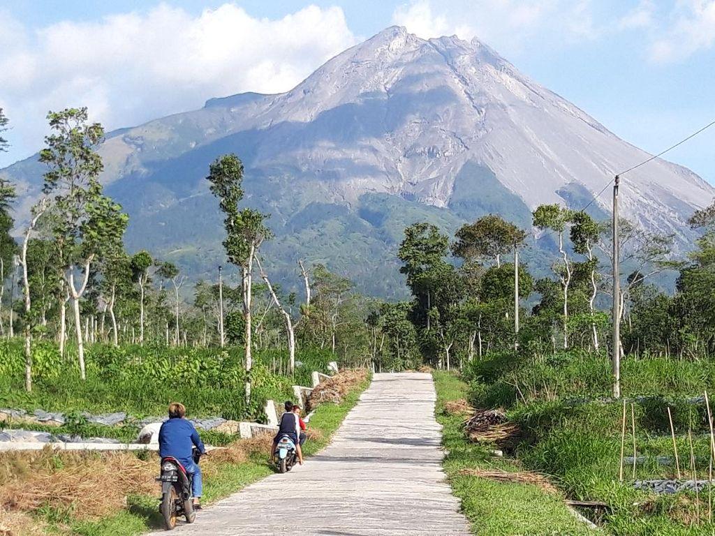 Beredar Voice Note Binatang Buas Gunung Merapi Turun ke Selo, Kades: Hoax!