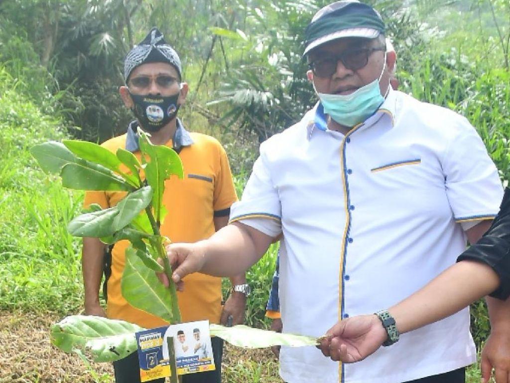 Hari Pohon Sedunia, Cabup Marwan Ingatkan soal Mencintai Lingkungan