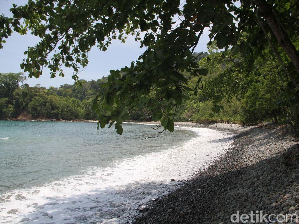Pantai Teluk Ijo, Gradasi Hijau dan Biru Laut di Banyuwangi