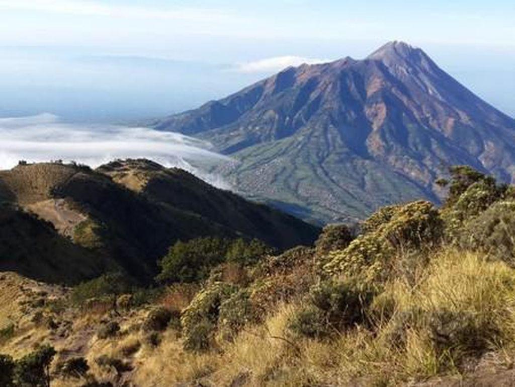 Gerakan Jateng di Rumah Saja, TN Gunung Merbabu Tutup 3 Tempat Wisata