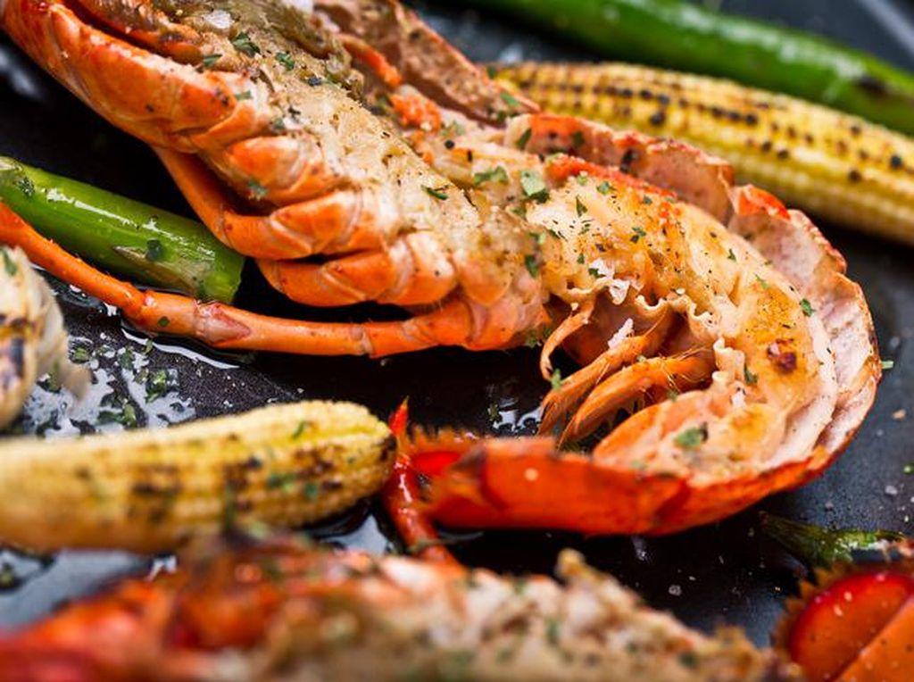 Chef Dilarang Rebus Lobster Hidup Karena Langgar Kesejahteraan Hewan