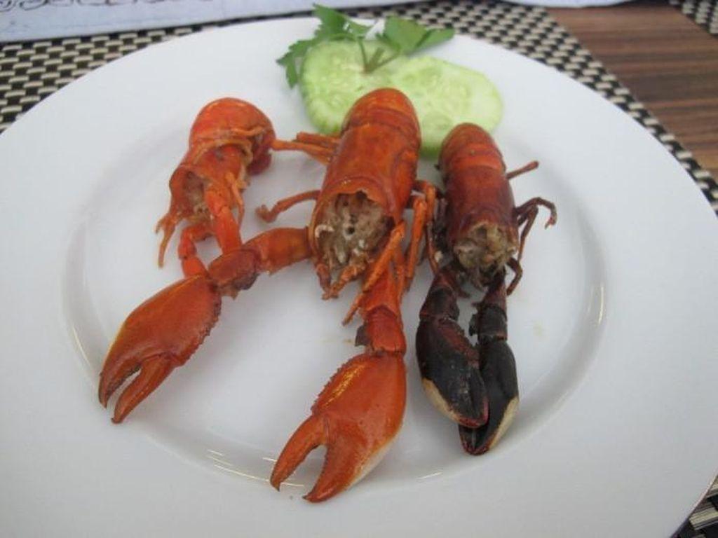 Heboh Lobster, Ada Udang Selingkuh Berharga Mahal di Papua