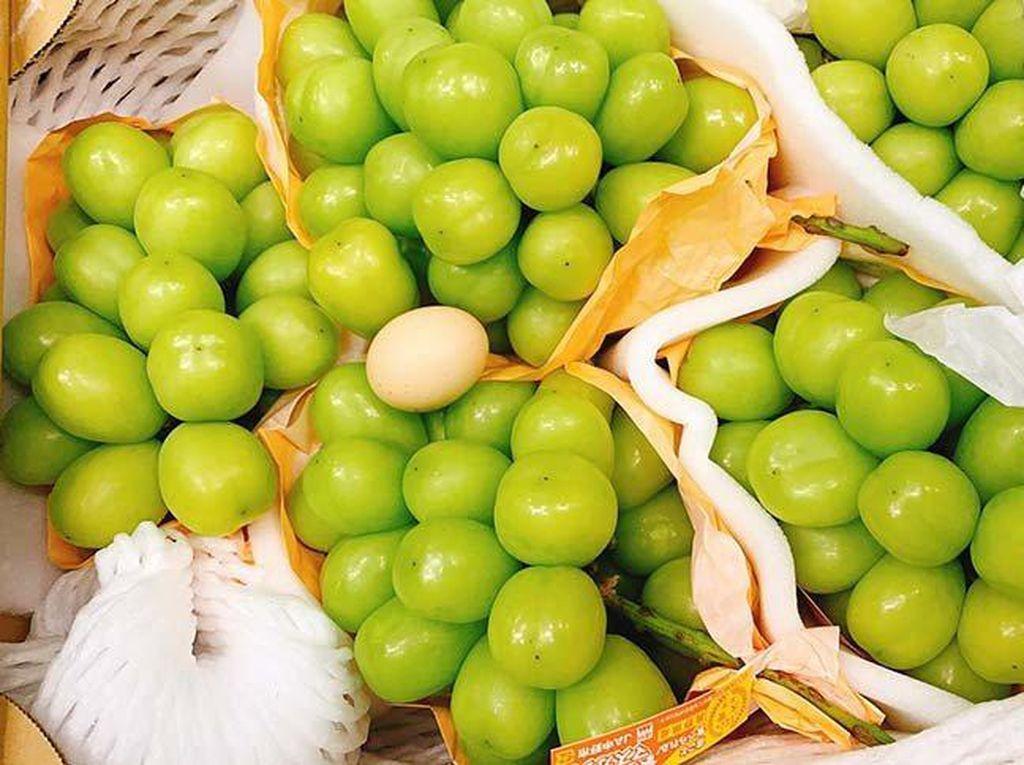 Lebih Besar dari Telur Ayam, Anggur Ini Diprediksi Termahal di Dunia