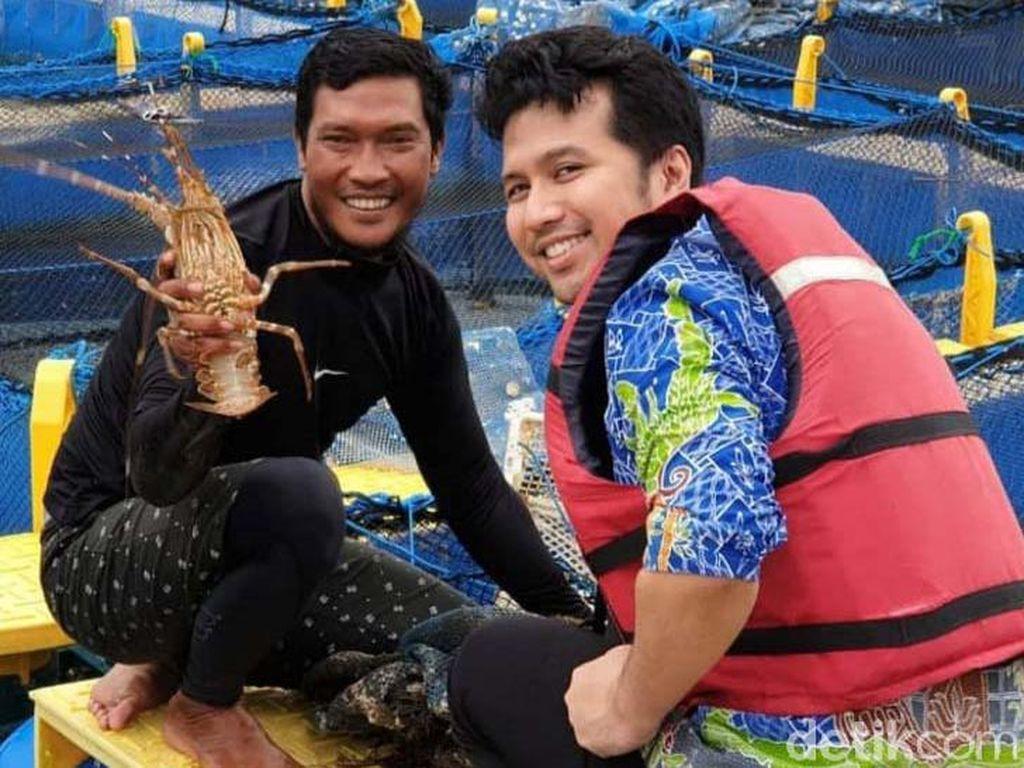 Saat Kran Ekspor Benur Dibuka, Nelayan Trenggalek Ini Justru Budidaya Lobster