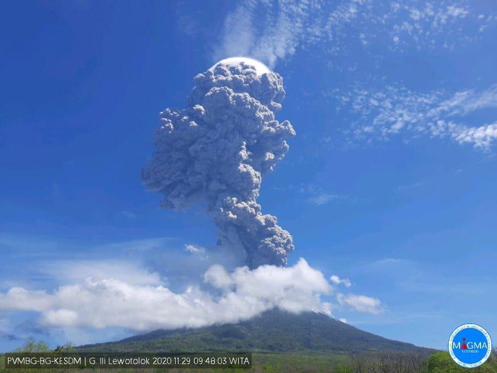 4.000 Lebih Warga Ngungsi Pascaerupsi Gunung Lewotolok NTT, Butuh Tenda-Air