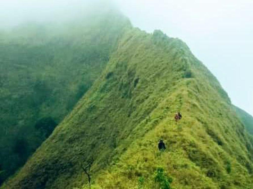 Foto: Gunung Pyramid Bondowoso yang Disebut Setara Cartenzs