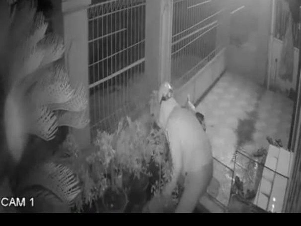 Terekam CCTV, Pencuri Bermobil Gondol 5 Pot Tanaman Hias Jadi Viral
