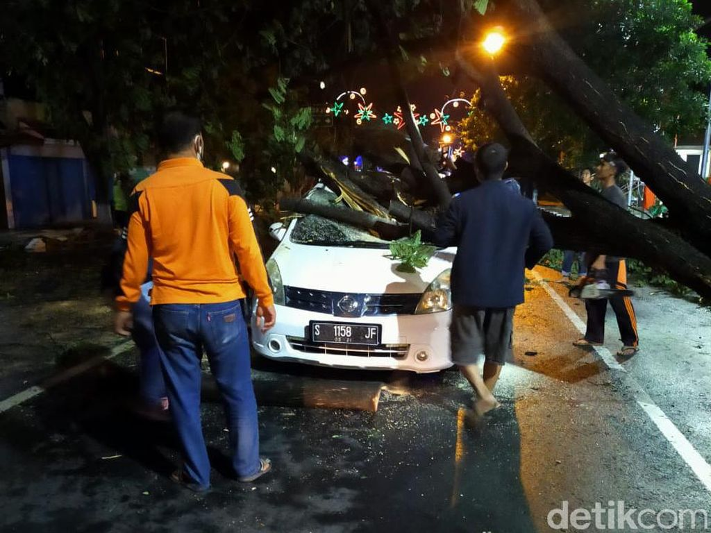 Pohon Tumbang Timpa Mobil Saat Hujan Deras Disertai Angin Kencang