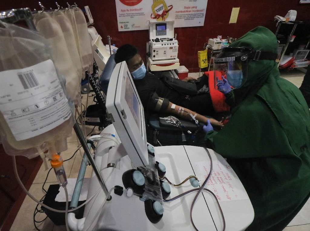 PMI Bali ke Desa, Kantongi 340 Plasma Darah Konvalesen untuk Pasien COVID