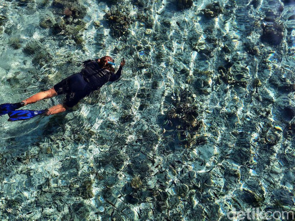 Mau Snorkeling di Labuan Bajo? Bisa Nih di Pulau Kanawa