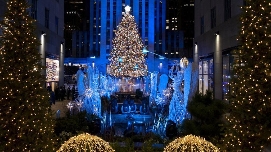 Cantiknya Warna-warni Pohon Natal