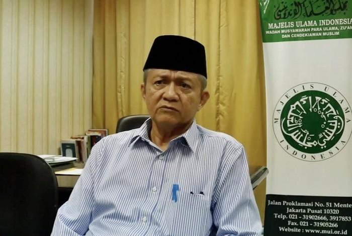 Waketum MUI Anwar Abbas