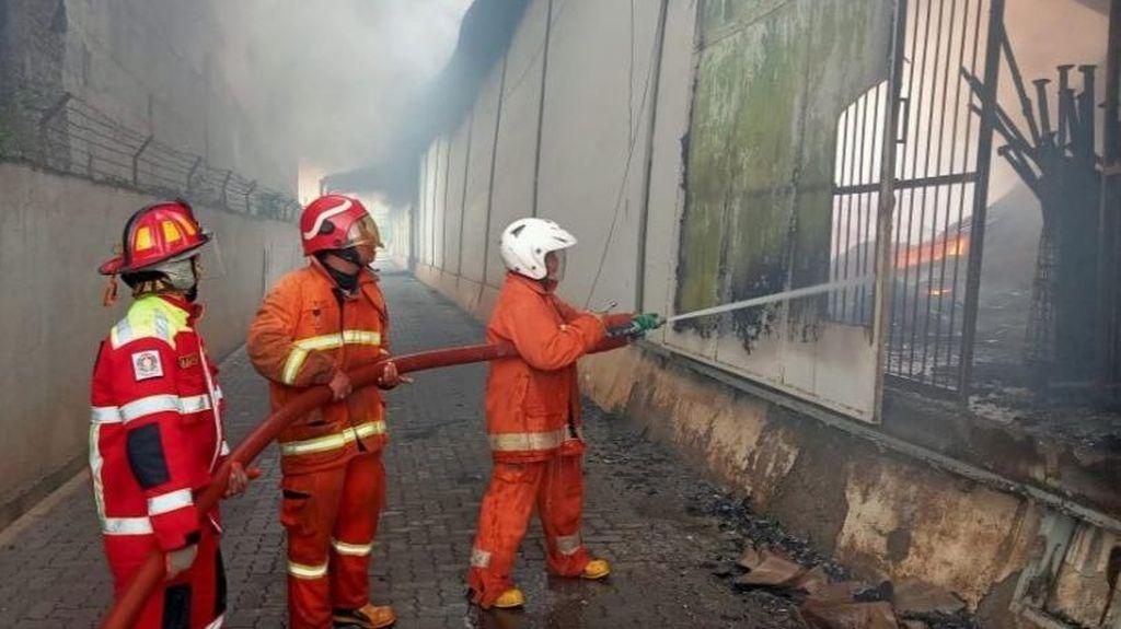 Aksi Petugas Damkar Padamkan Api di Pabrik Teh Batang