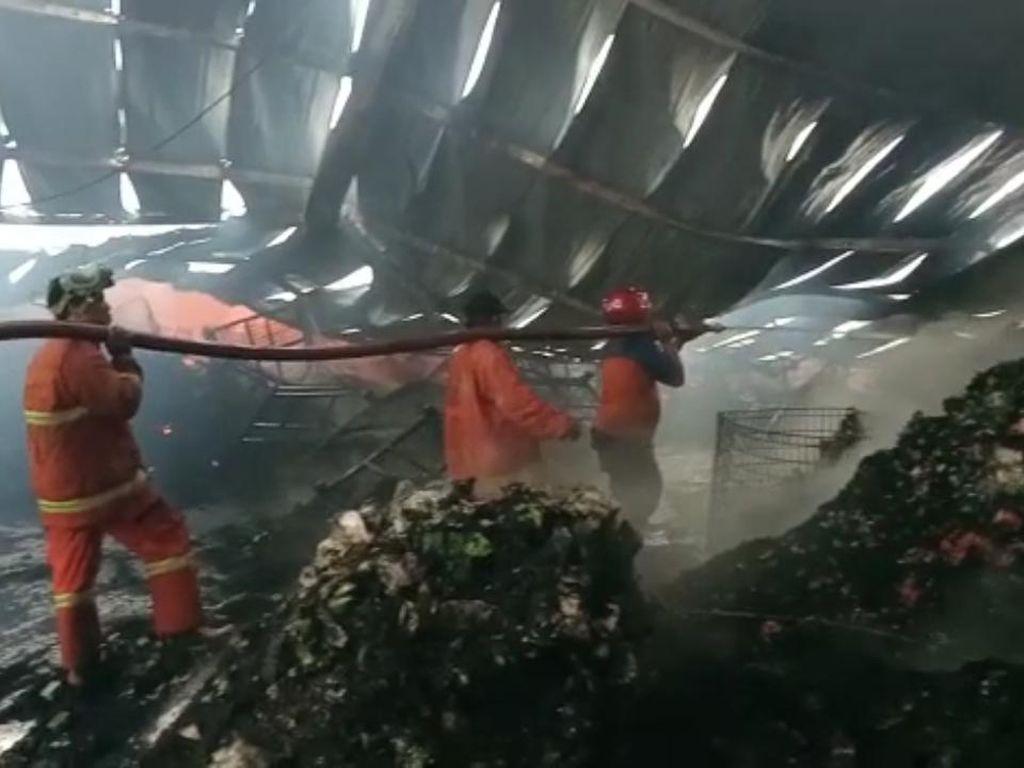 6 Gudang Pabrik Teh di Batang Ludes Terbakar