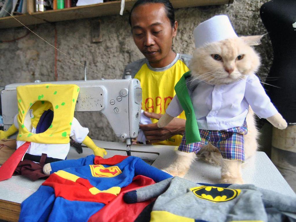 Geliat Produksi Kostum Lucu Untuk Kucing