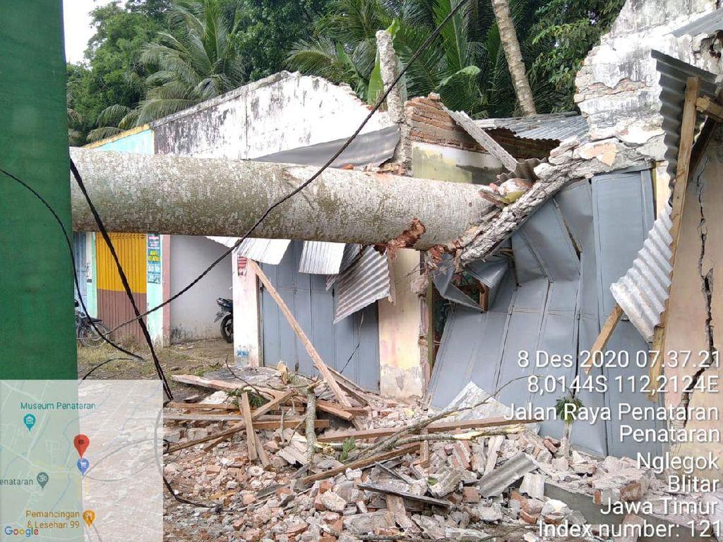 Angin Kencang Tumbangkan Puluhan Pohon di Lima Desa Blitar