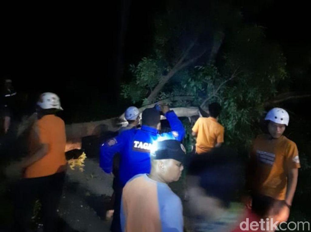 Di Cianjur, Belasan Pohon Tumbang Timpa Sejumlah Pengendara