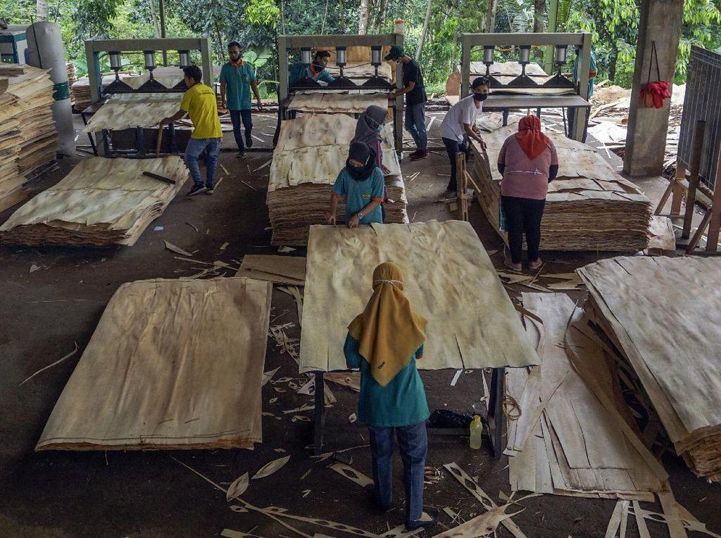 Geliat Produksi Kayu Lapis Ekspor di Batang