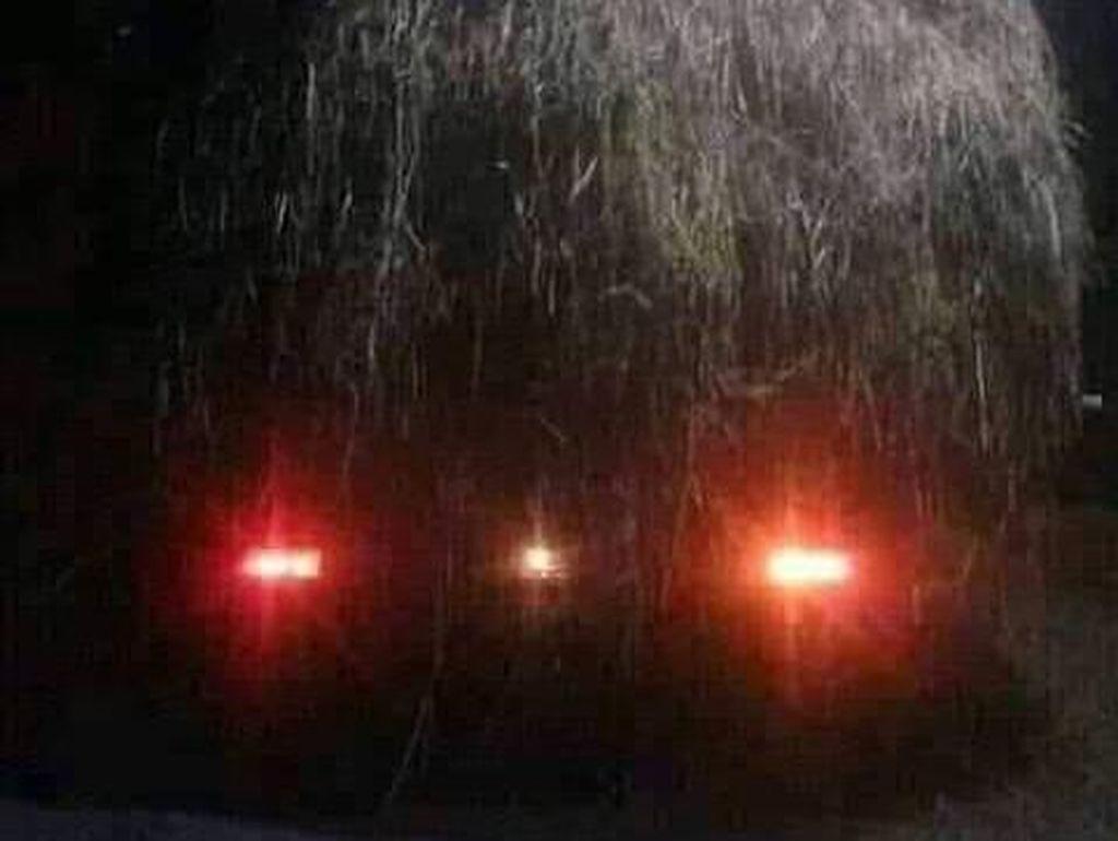 Heboh Genderuwo, Ternyata Mobil Pikap Angkut Jerami Kering