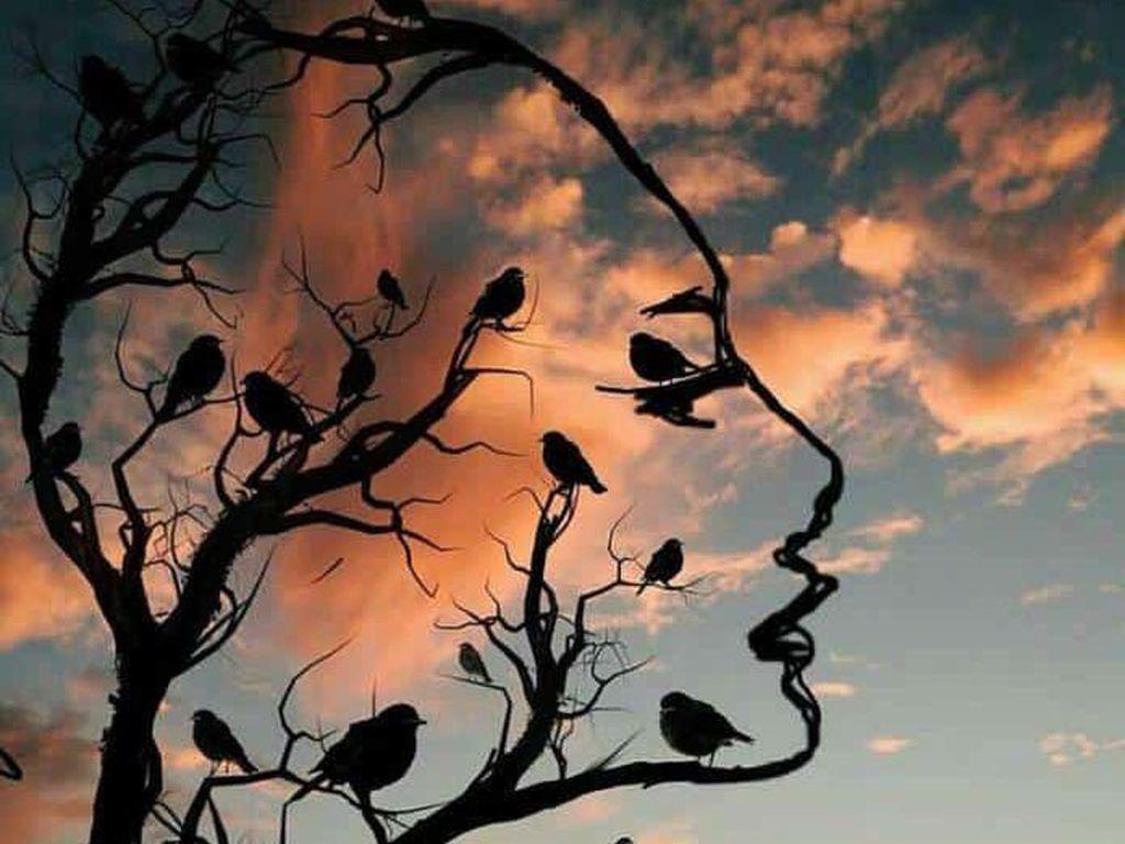 Tes Kepribadian: Gambar Pohon & Burung atau Wajah yang Pertama Kamu Lihat?