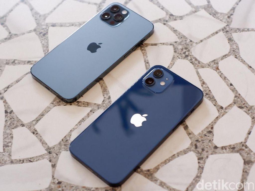 iPhone 12 Resmi Dirilis di Indonesia