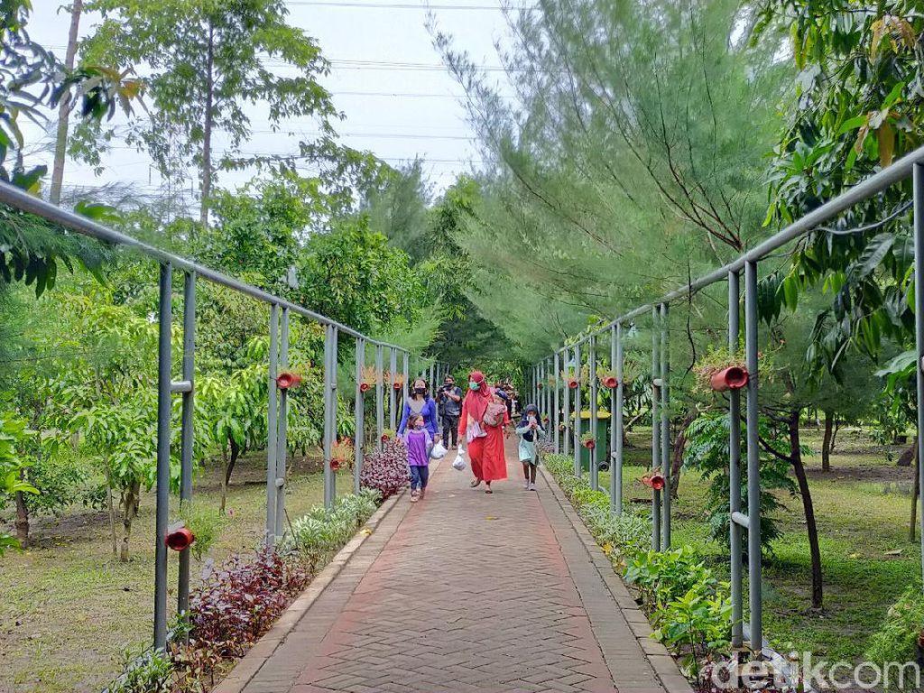 13 Taman Hutan Raya di Surabaya Buka Jelang Libur Nataru
