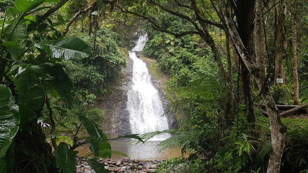 Air Terjun Sarambu Liawan di Mamasa, Alami Banget!
