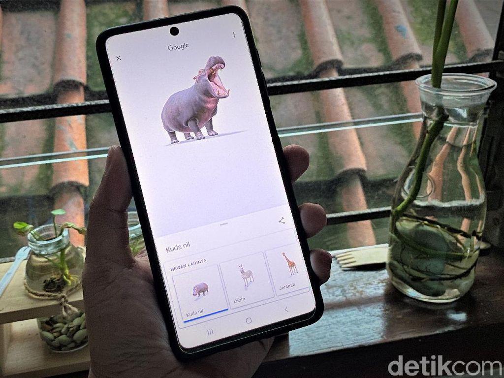 Google Tambah 50 Hewan Augmented Reality, Yuk Cobain!