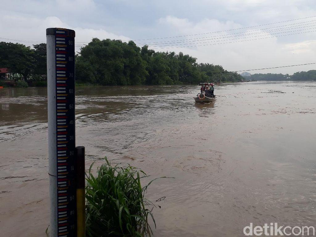 Curah Hujan Tinggi di Bojonegoro, Debit Air Sungai Bengawan Solo Naik