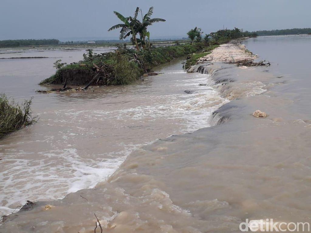 Tergerus Hujan, Tanggul di Dua Kecamatan Lamongan Jebol