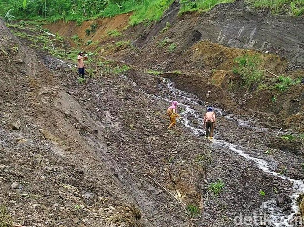 BPN: Penguasaan Tanah oleh PTPN Tak Ada Hubungan dengan HGU