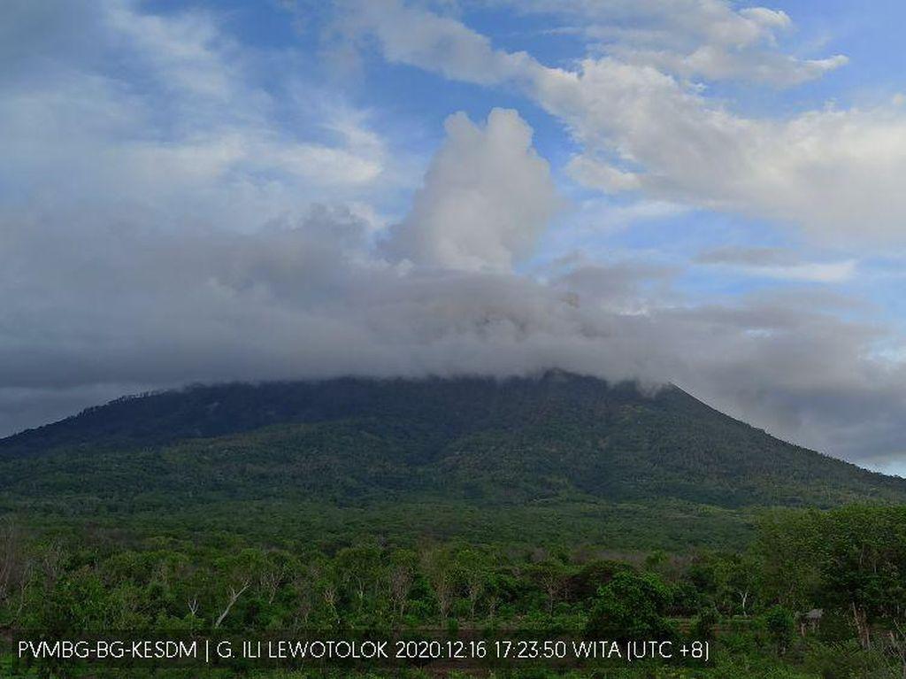 PVMBG: Gunung Ili Lewotolok Masih Erupsi, Sehari Bisa Lebih 10 Kali