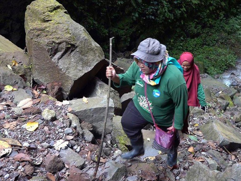 Kisah Para Perempuan Penjaga Hutan Aceh