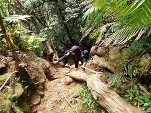 10 Tips Mendaki Gunung Salak yang Aman dan Nyaman